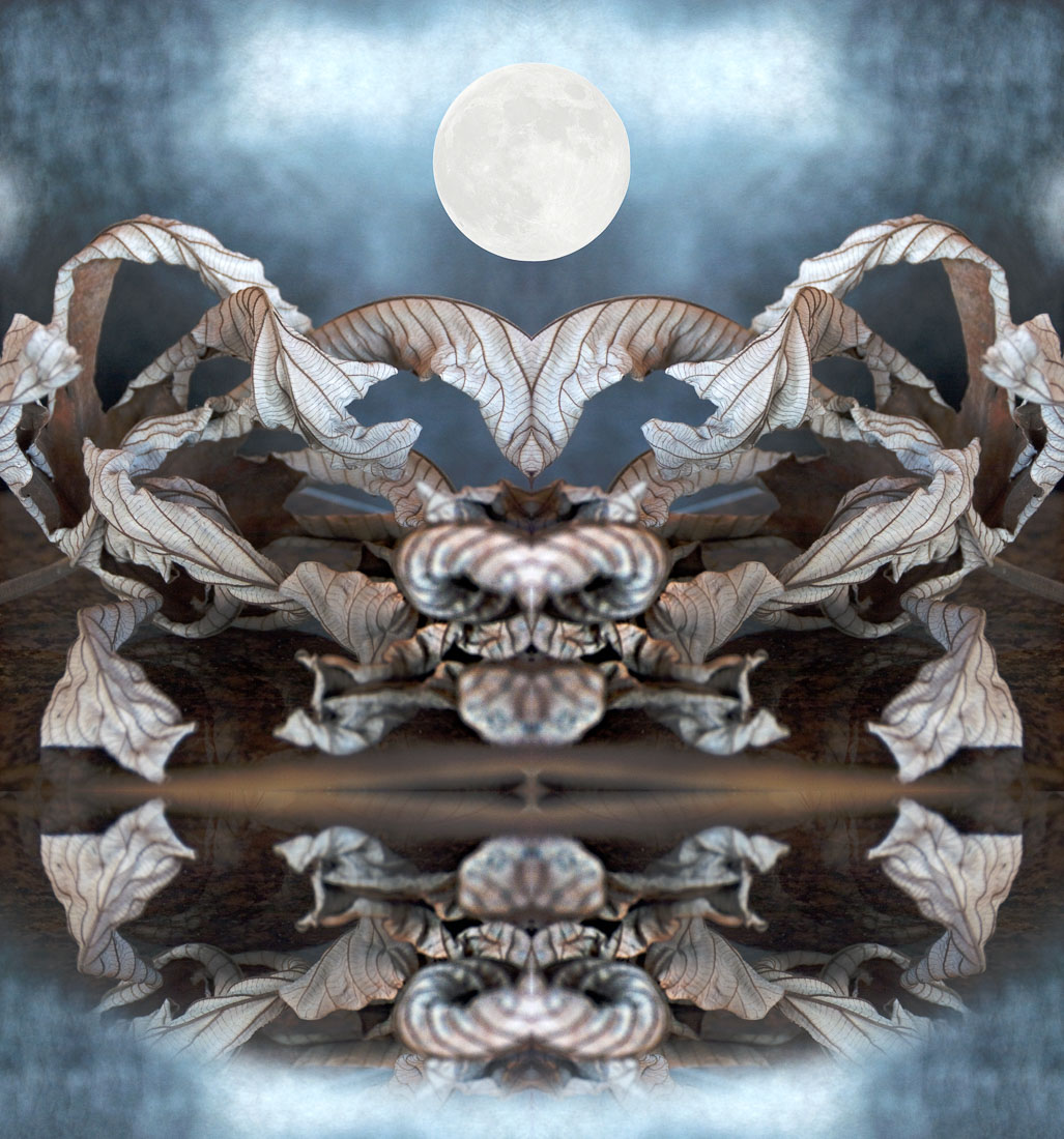 2 Blue Moon Orpheus
